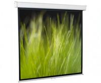 Экраны Экран настенно-потолочный ScreenMedia Goldview (формат 16:9)