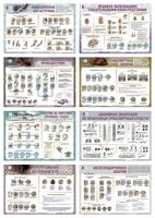 Плакаты Плакаты Правила поведения в аварийных ситуациях на транспорте (8 шт)