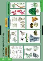 Распродажа со склада Комплект таблиц Общее знакомство с цветковыми растениями (6шт.)