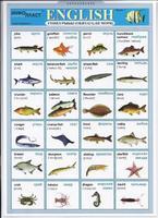 Английский язык Раздаточная таблица Английский в картинках Часть 3. Рыбы