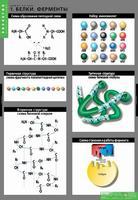Таблицы Комплект таблиц Химия клетки (3шт.)