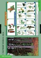 Таблицы Комплект таблиц Растения и окружающая среда (7шт.)