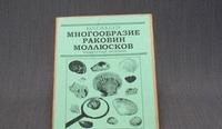 Коллекции Многообразие раковин моллюсков