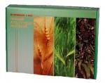 Гербарии Кормовые растения (20 видов)