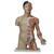 Мускулатура Модель торса, двуполая, класса «люкс», с мышцами руки, азиатского типа, 33 части