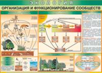 Печатные пособия Таблица Организация и функционирование сообществ (Винил)