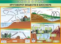 Печатные пособия Таблица Круговорот веществ в биосфере (Винил)