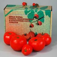 Распродажа со склада Набор муляжей «Дикая форма томата обыкновенного и культурные сорта томатов»