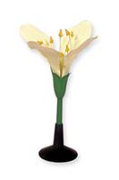 Модели из пластмассы Цветок капусты