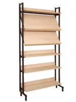 Библиотечная мебель Шкаф-стеллаж комбинированный 2 наклонные и 4 горизонтальные полки