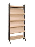 Библиотечная мебель Шкаф-стеллаж комбинированный 4 наклонные и 2 горизонтальные полки