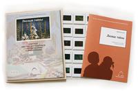 Естествознание Слайд-комплект  «Лесные тайны»